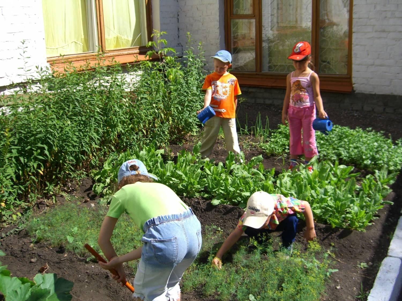 Тропинка здоровья на участке детского сада своими руками